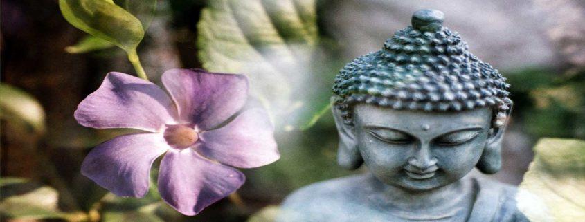 Pacific Zen